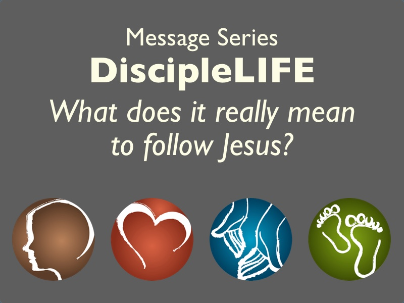 DiscipleLIFE series small